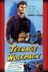Teenage Wolfpack Movie Streaming Online