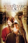 The Christmas Miracle of Jonathan Toomey Movie Streaming Online