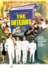 The Interns Movie Streaming Online