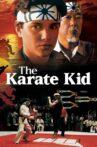 The Karate Kid Movie Streaming Online