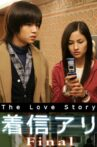 The Love Story Movie Streaming Online