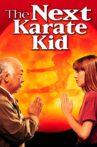 The Next Karate Kid Movie Streaming Online