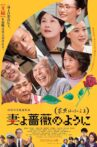What a Wonderful Family! 3: My Wife, My Life Movie Streaming Online