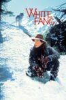 White Fang Movie Streaming Online