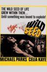 Wild Seed Movie Streaming Online