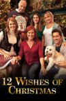12 Wishes of Christmas Movie Streaming Online