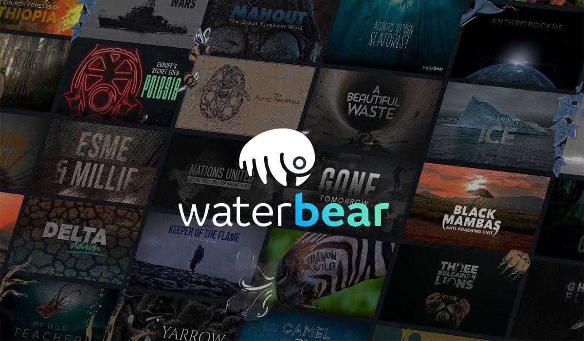 Waterbear - Network