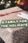 A Family for the Holidays Movie Streaming Online
