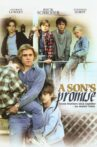 A Son's Promise Movie Streaming Online