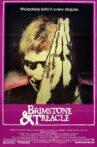Brimstone & Treacle Movie Streaming Online