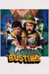 Busting Movie Streaming Online