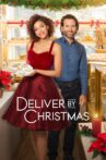 Deliver by Christmas Movie Streaming Online