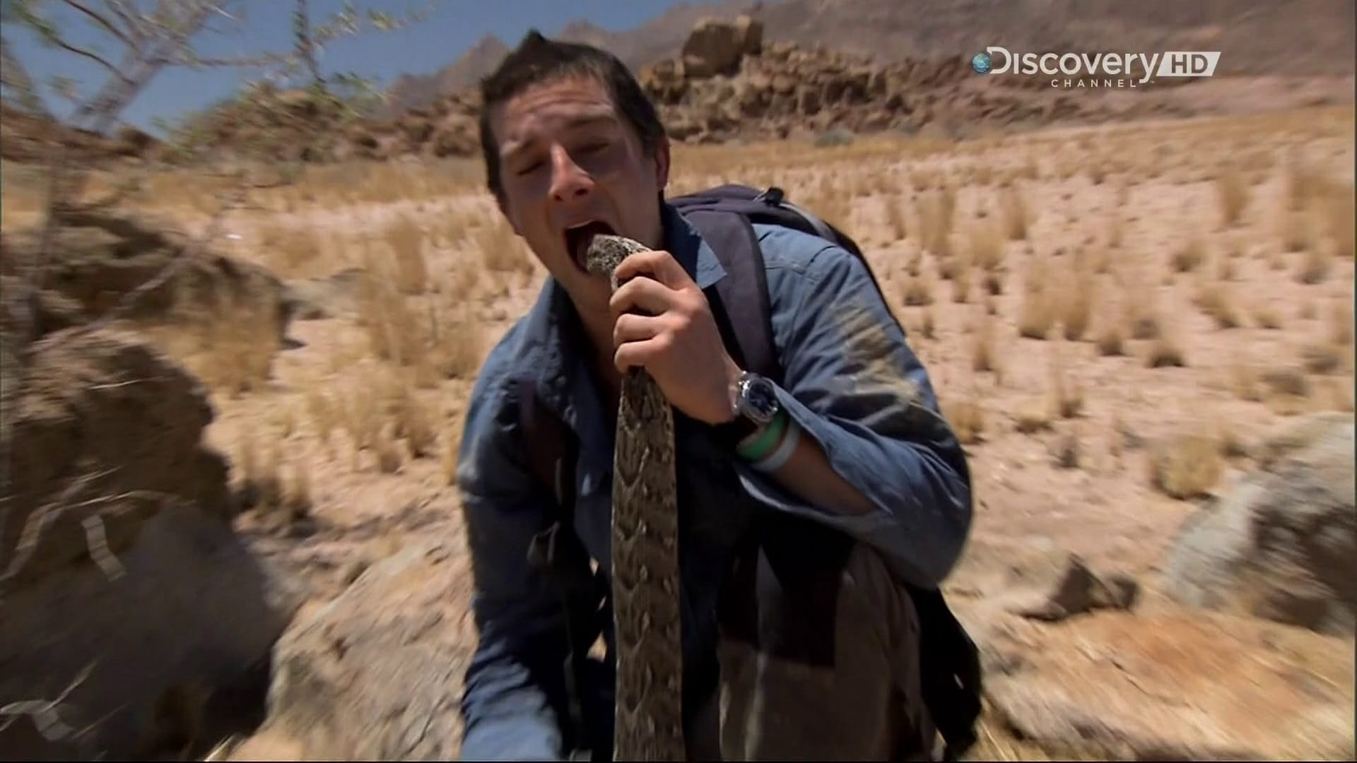 Fine Dining With Bear Grylls Movie Streaming Online