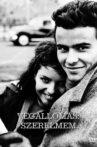 Last Stop Love Movie Streaming Online