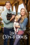 Like Cats & Dogs Movie Streaming Online