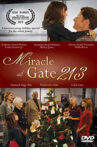 Miracle at Gate 213 Movie Streaming Online