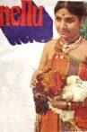 Nellu Movie Streaming Online