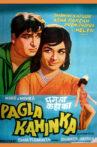 Pagla Kahin Ka Movie Streaming Online
