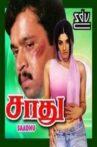 Sadhu Movie Streaming Online