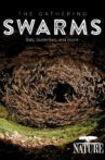The Gathering Swarms Movie Streaming Online