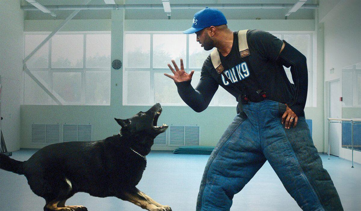 Canine-Intervention