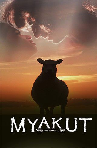 MYAKUT-(the-sheep)