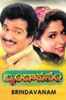 Brindavanam Movie Streaming Online