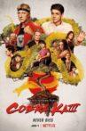 Cobra Kai Movie Streaming Online