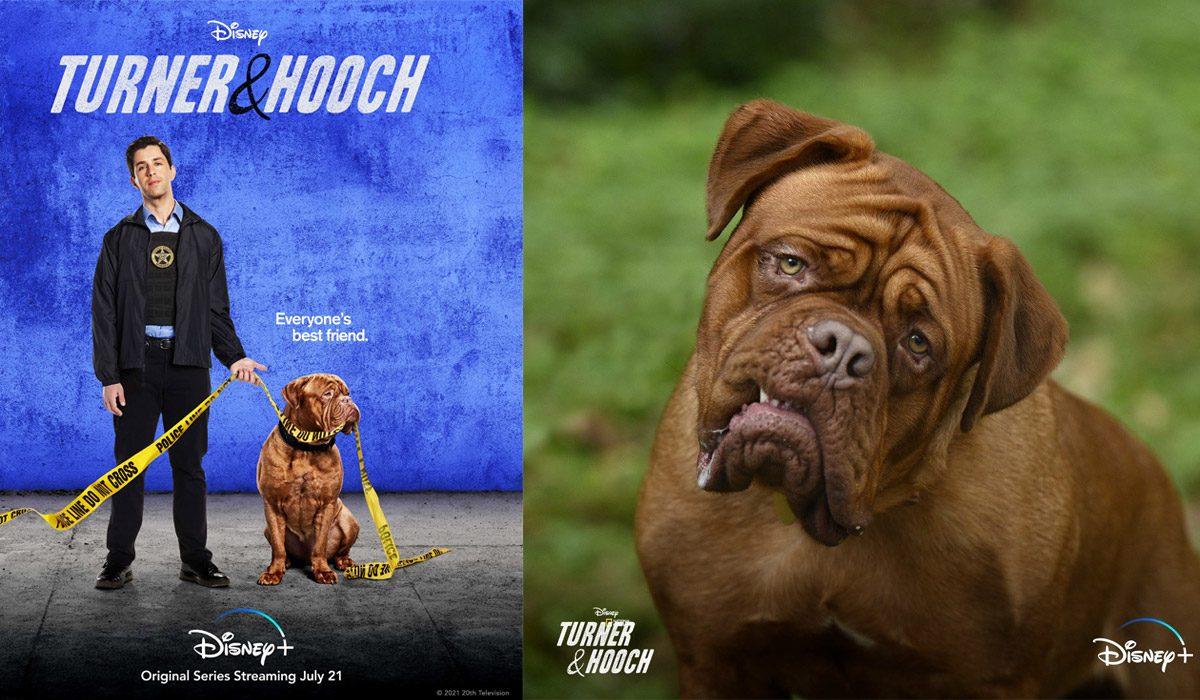 """Disney Plus' """"Turner & Hooch"""" Reboot Series Is Finally Here!"""